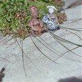 Les 2 mini dames