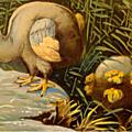Le dodo, l'oiseau emblématique de l'île maurice...
