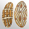Two rare <b>Aboriginal</b> shields realize over $45,000 and two new global fine records set at Clars