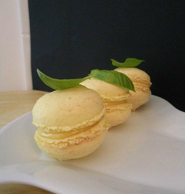 Macarons Citron-Basilic