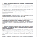 Windows-Live-Writer/Projet-TOUS-AU-JARDIN-_F95C/image_thumb_20
