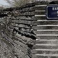 Bordeaux, rive droite : esplannade linné