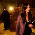Scream 4 - première image officielle