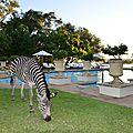 Les vallées du Zambèze et de la Luangwa