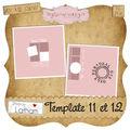 Template 11 et 12 de latham
