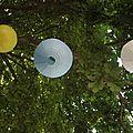 Des lampions dans les arbres..