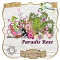 Kit paradis rose de boudinette