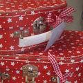 Ma valise en carton
