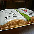 Gateau livre - book cake - happy 20th birthday !
