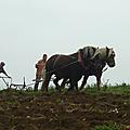 Jardins fertile - jean-yves point - rhône (69)