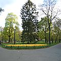 BOSTON COMMON PARK (117)
