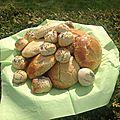 Scones (s.gluten et s.caséine)