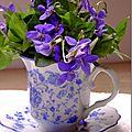 Violettes cristallisées...