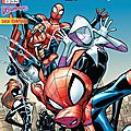 Panini Marvel : Spiderman Universe