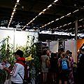 Des bambous et des artistes