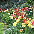 Anniblog - printemps et été...
