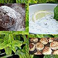 Boulettes de viande à la menthe et dip au fromage blanc