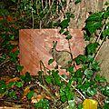 Le jardin de Marie-Louise et Couendy