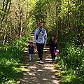 Une ballade en forêt ... en famille