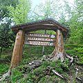 Mon top 10 <b>Forêt</b> <b>Noire</b>: N°2: la randonnée d'Allerheiligen