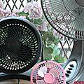 Quel ventilateur choisir ? {aïe, aïe, aïe queé caloooooorr!}