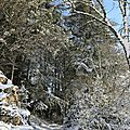 Photos JMP©Koufra 12 - Le Caylar - 01122017 - 094
