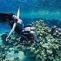 L'artiste sue austin - la plongee sous-marine en fauteuil roulant ...