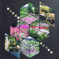 cubes au jardin