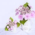 bouquets blancs et roses high <b>key</b>
