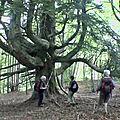 Mont charvet 1572 m du lindar – aillon-le-jeune 73340