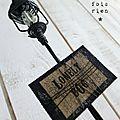 Lonely dog chien et lampadaire fil de fer (4)