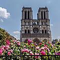 Notre Dame de Paris - Tristesse Extrême -