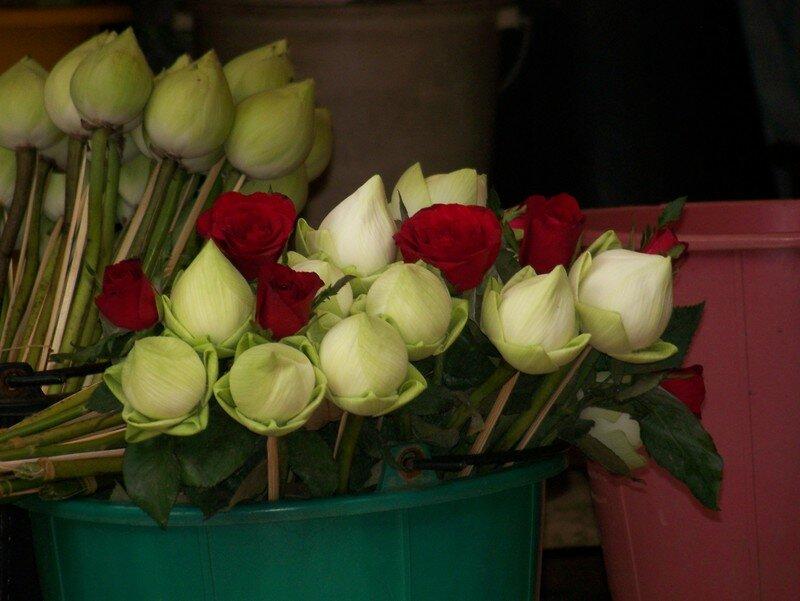 roses et boutons de lotus pour offrande