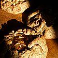 Tartelettes rustiques aux pommes et marrons