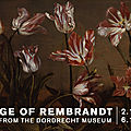 Columbus Museum of Art celebrates international partnership with exclusive exhibition from The Netherlands