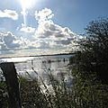 Le marais du Pommier Houesville 14 octobre 2012 011