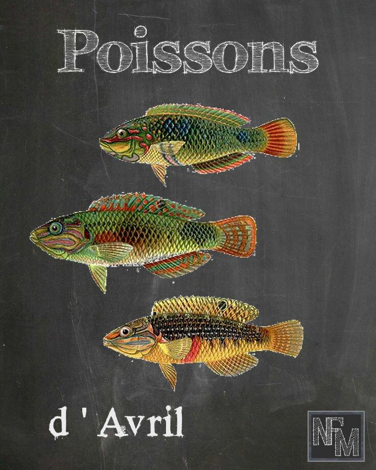 Poissons d'avril-10
