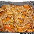 Gâteau rustique a l'abricots