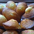 The madeleines de