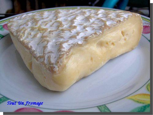 Brie de Melun (Ile de France)