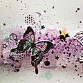 Des papillons juste pour le plaisir