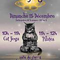 Matinée cat yoga et pilates dimanche 15 décembre à tyrosse