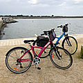 Loix (<b>Charente</b> Maritime)