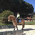 2017 03 08 équitation 13