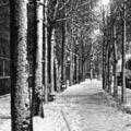 Paris : sports d'hiver en automne