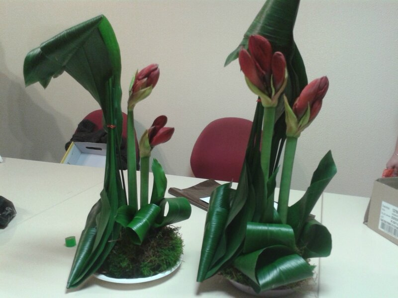 art floral 012013