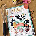 La tribu des idées, le magazine familial du diy [découverte]