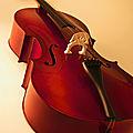 Autour du <b>violoncelle</b>... Première partie