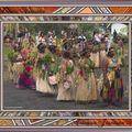 Tanna au Vanuatu, île de la Malanésie