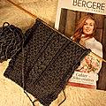 petit tricot d'octobre (1)